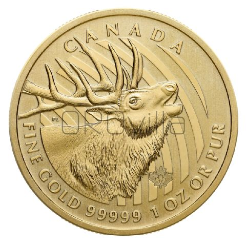 200 Dollari Cervo (2017)