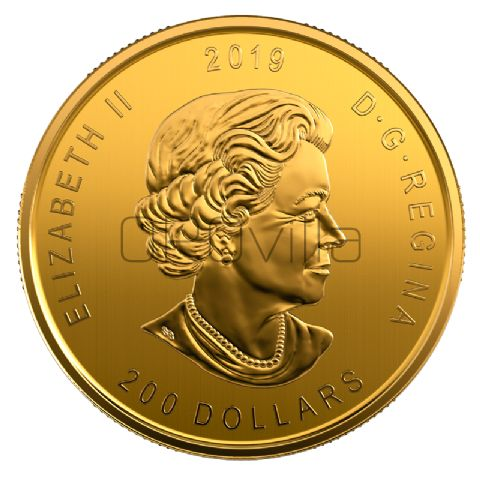 200 Dollari Alce americano (2019)