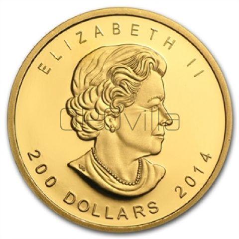 200 Dollari Lupo (2014)