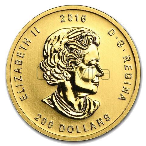 200 Dollari Orso (2016)